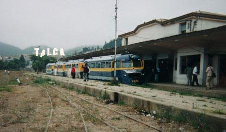 talca7.jpg